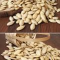 Lady nail organic pumpkin seeds in shell
