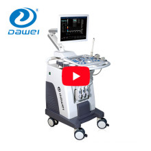 DW-C8 Plus trolley color doppler and 4D function ultrasound machine