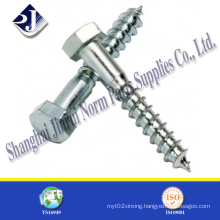 Hex Lag Screw