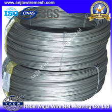 Electro Galvanized Iron Steel Wire for Construction