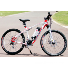 26' Mountain Electric Bicycle with 36V10ah Battery
