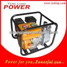 Einphasige elektrische Wasserpumpe mit Druckbehälter
