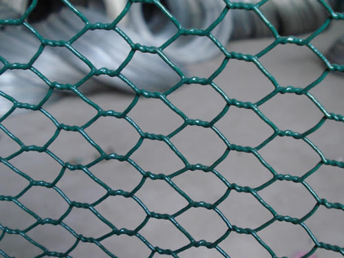 pvc-coated-chicken-wire-mesh