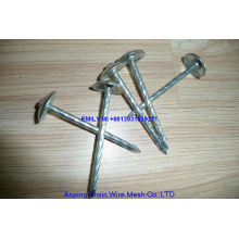 Umbrella Head Roofing Nails