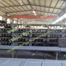 Совместные резиновые полосы расширения моста (продается в Пакистан)