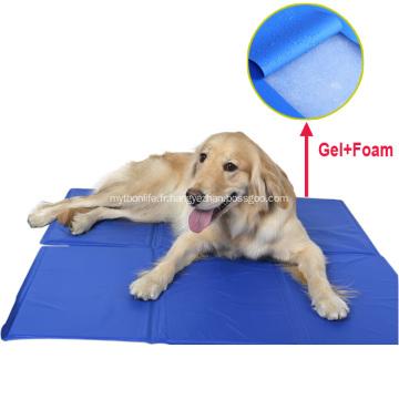 Tapis de glace autoportant pour chien