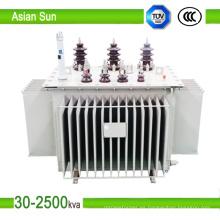 10kV 30kVA ~ transformador de distribución inmerso en aceite de serie de 1600kVA