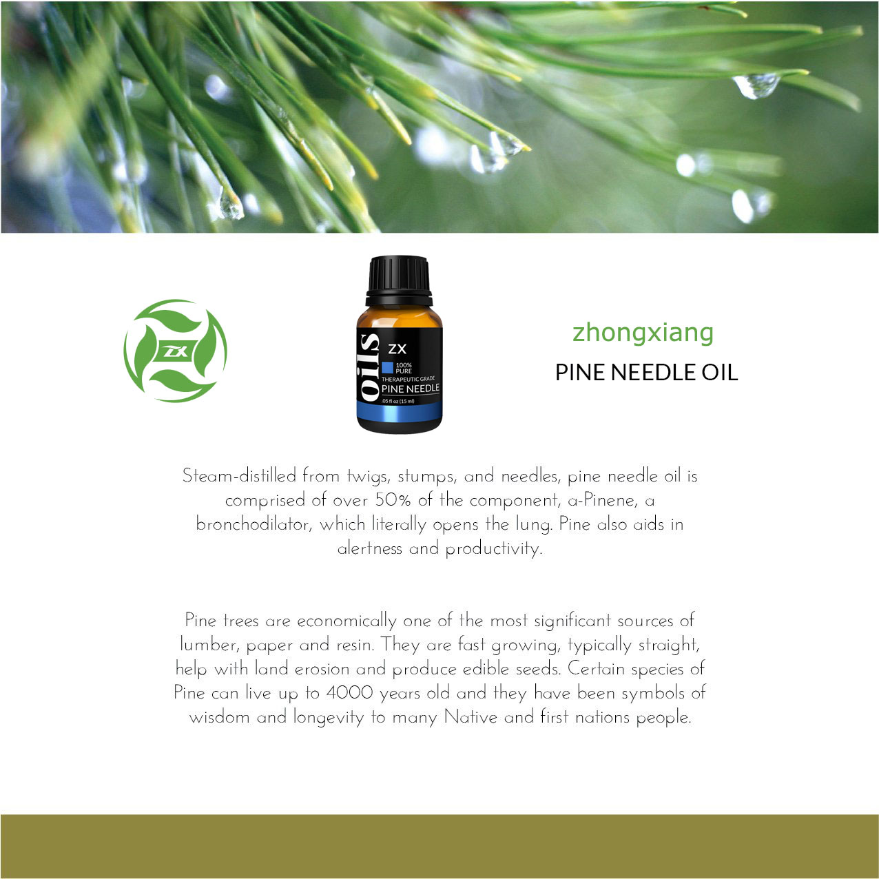 Pine needle oil7