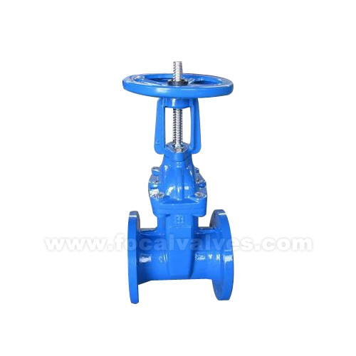 Rising Stem Resilient Seated Gate Valves