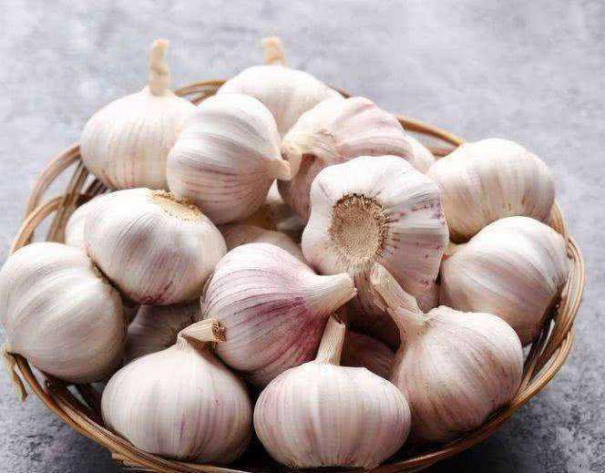 Garlic 6