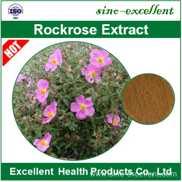 natural Rockrose extract powder