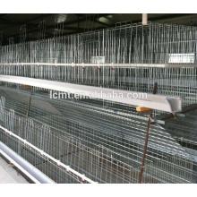 jaula de pollo barata de los precios de fábrica para la granja avícola de la capa del pollo