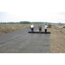 PP Biaxial Geogrids for Buidling High Way