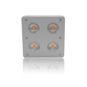 230W COB Tinggi PAR Full Spectrum LED Grow Lighting