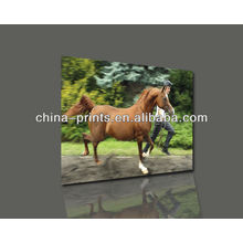 High Quality Handpainted Horse Oil Painting With Stretched