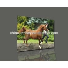 Pintura a óleo Handpainted cavalo de alta qualidade com esticado