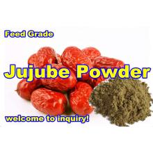 Poudre de Jujube pour l'additif d'alimentation des animaux (qualité d'exportation)