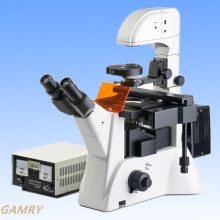 Microscopio invertido de alta calidad profesional de la fluorescencia (IFM-2)