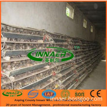 Layer Quail Cage for Farm/ Metal Quail Cages for Sale