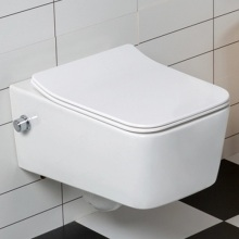 Wall Toilet Bidet Nozzle Ceramic Sanitary BidetToilet