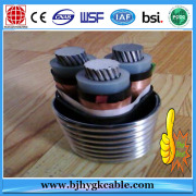 Underground 0.6-1KV XLPE Insulation Aluminum Alloy Electrical Cable with STA/ SWA Armour