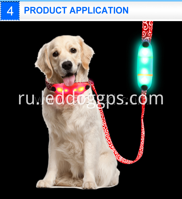 Led Light-Up Dog Leash