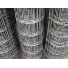 La clôture en maille soudée en PVC galvanisée et revêtue de haute qualité