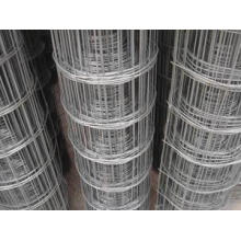 A cerca de malha de arame soldada revestida de PVC de alta qualidade / galvanizada