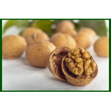 Chinese Grade A Natural Walnut Kernel (LH)