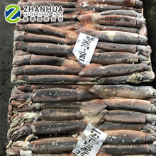 New arriaval 2020 Seafrozen Illex squid whole round for market selling export thailand