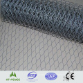 Galvanized Hexagonal Wire Netting (HT-G-002)