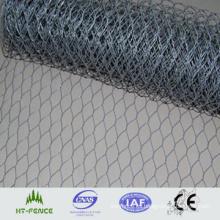 Acoplamiento de alambre hexagonal galvanizado (malla de alambre de pollo) (HT-G-004)