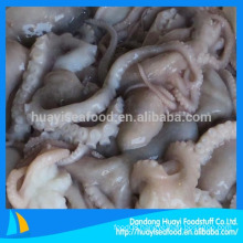 high quality frozen small octopus