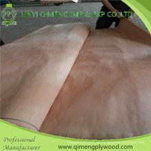 Boa cor e grão corte rotativo Okoume folheado de Linyi