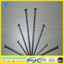 Cast Iron Nails with Polished Treatment (XA-CN004)