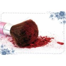 Ensemble de pinceaux de maquillage personnalisé le plus récent
