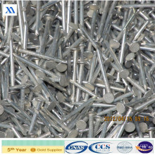 Bright Polished Common Iron Nails (XA-WN5)