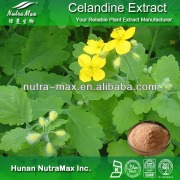Herb Medicine Celandine Extract Chelidonine CAS NO.: 476-32-4