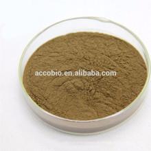 Bodybuilding Ergänzungen Foti Extract Powder, Flavone 60%