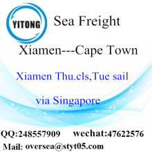 Xiamen Port LCL Consolidation To Cape Town