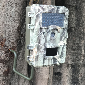 "Boskon Guard 2.4 ""LCD Display Trail Camera"