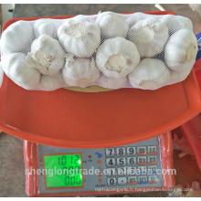Récolte d'ail blanc blanc chinois 2017 1kgx10 dans 10kg carton