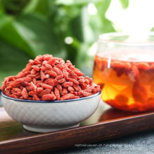 qixiang fábrica secada orgânica goji berris