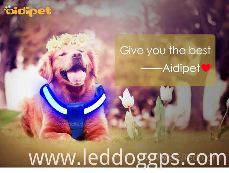 New Led Dog Harness
