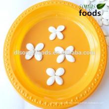 Small plastic white pumpkins