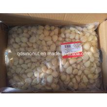 New Crop Fresh Peeled Garlic (in nitrogen bag or plastic jar)