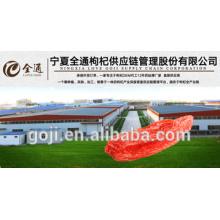 2016 nouvelle récolte GOJI BERRIES ---- usine professionnelle