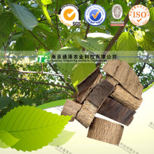 Natural Herbal Plant Raw Material Eucommia Ulmoides Oliver