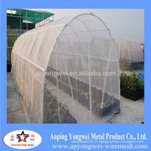 Des filets insecticides fabriqués en Chine