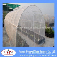 An ping insect nets made in China